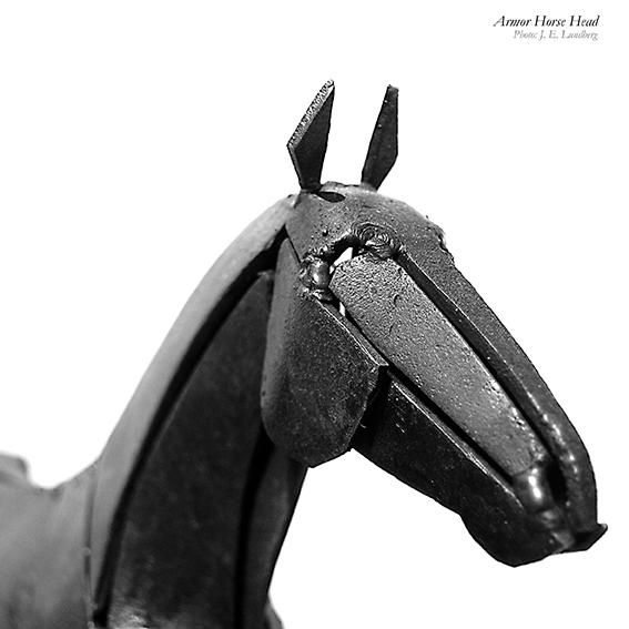 Hestehoved. Horse head. Photo: Jon Eirik Lundberg